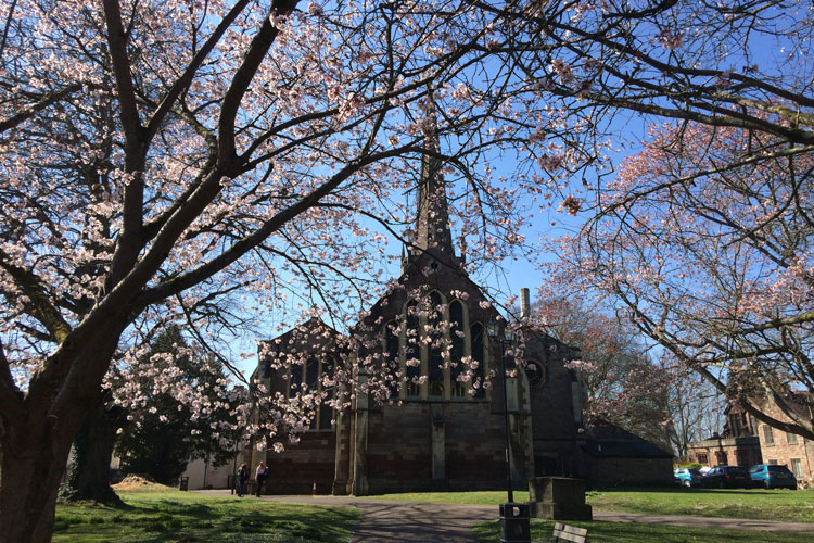 St Marys with cherry blossom